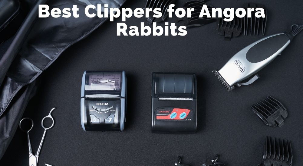 Best Clippers for Angora Rabbits